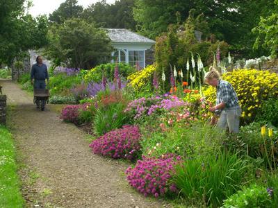 clovelly court gardens dog friendly Devon.jpg