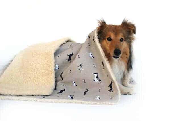 Designed For Dogs Luxury Dog Blanket