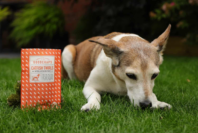 Collar Club Natural Dog Treats
