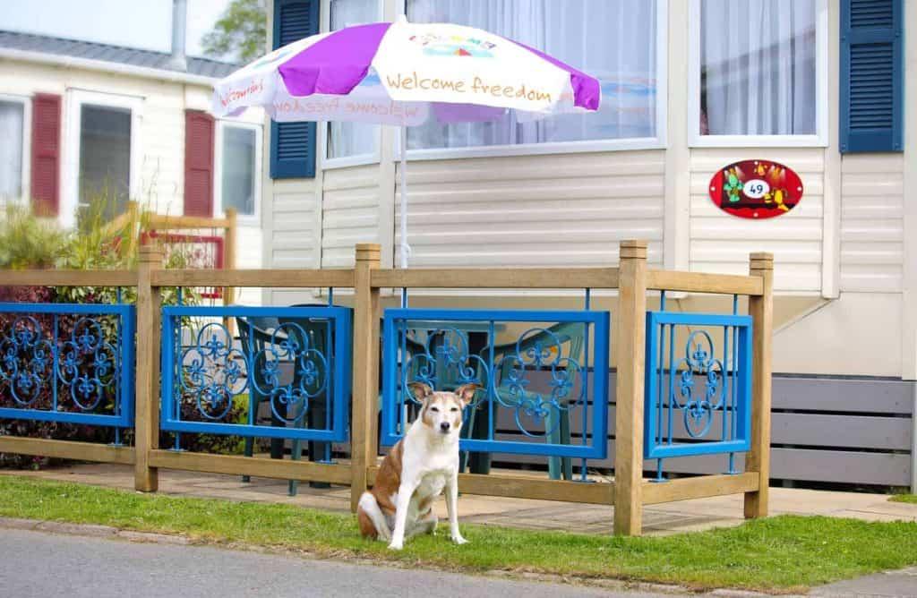 Dog Friendly Welcome Family Casperro Caravan Dawlish Warren