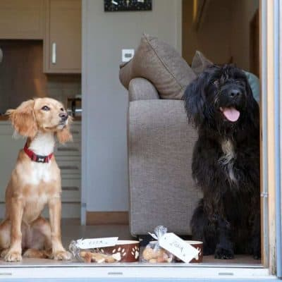 The Park 5 Star Dog Friendly Lodges Cornwall