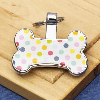 Pet Id Tags Express Bone Design