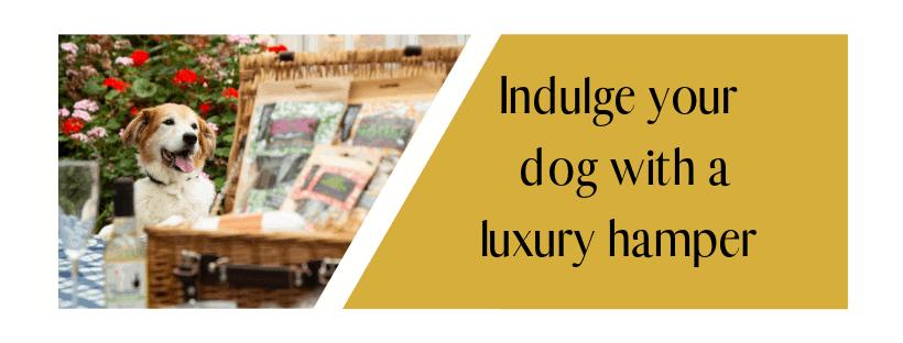 Luxury Dog Hampers