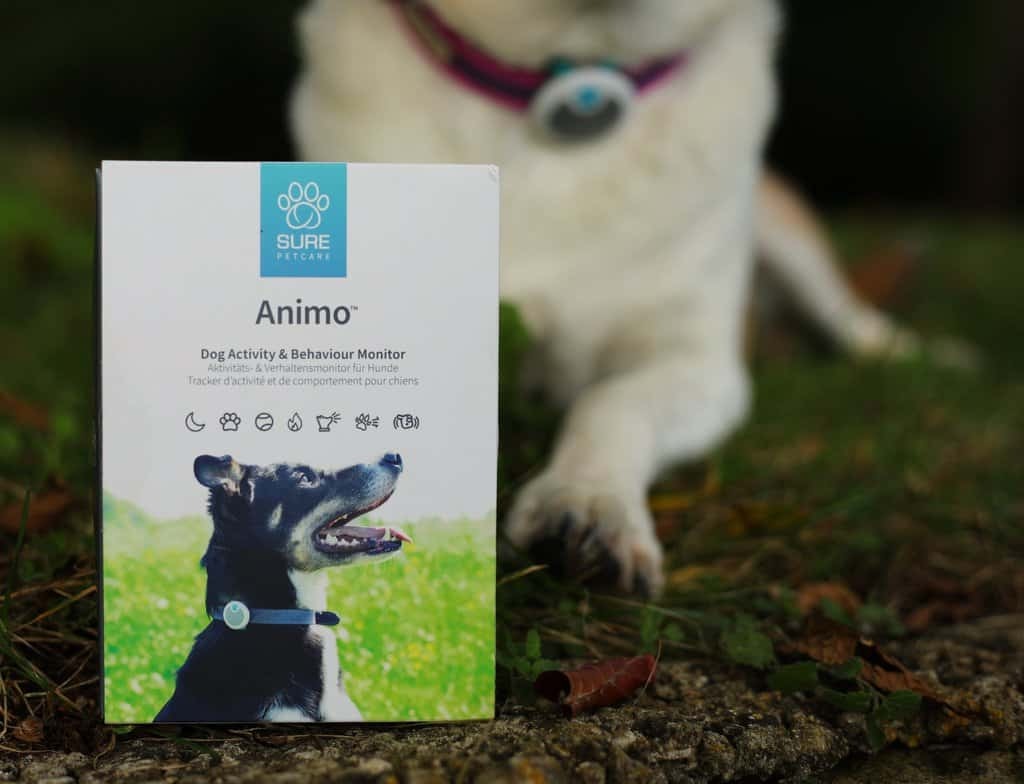 Animo Dog Health Monitor