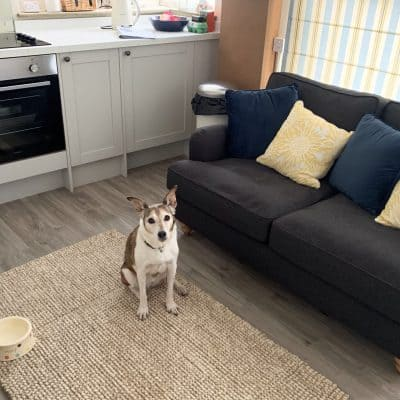 Dog Friendly Holiday Let The Little Loft St Ives