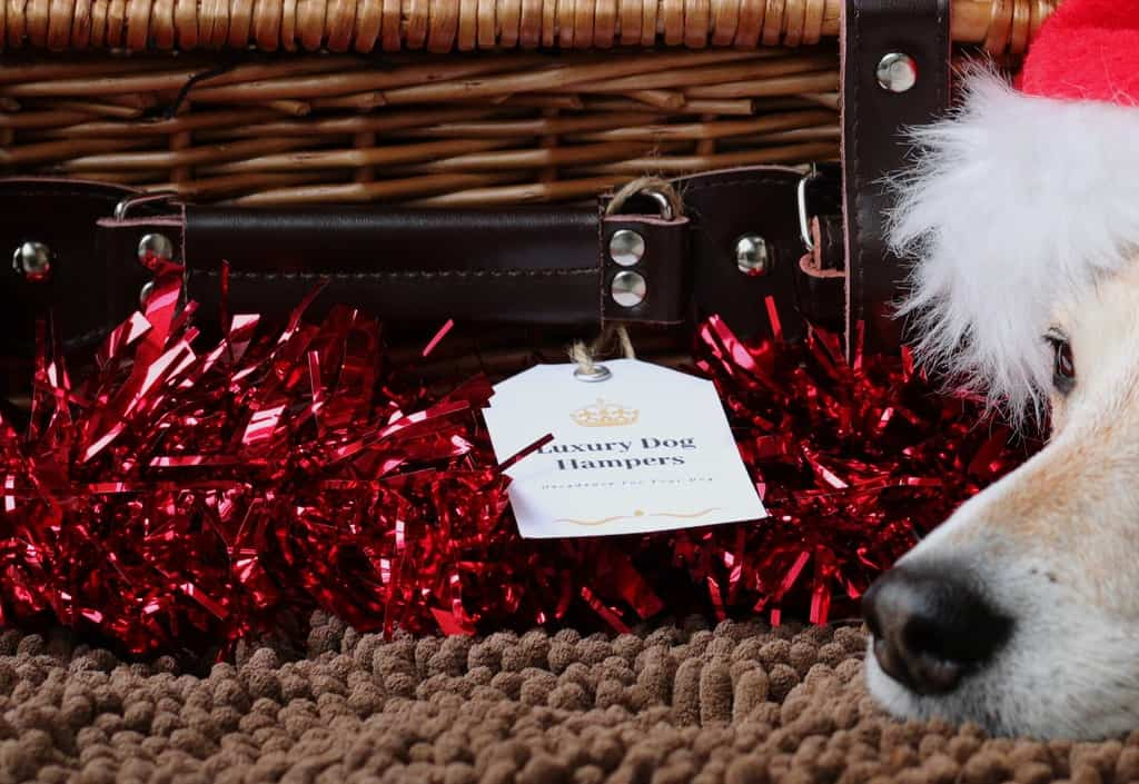 Fortnum and Mason Style Dog Hamper