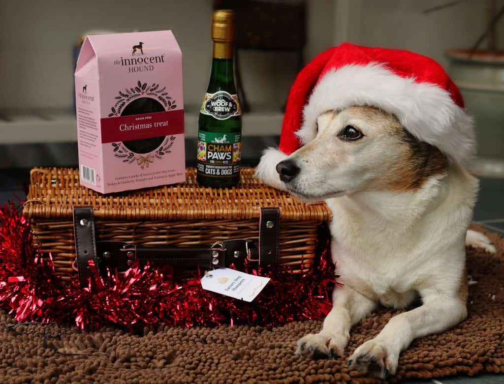 Luxury Hampers for Dogs