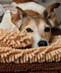Close up noodle dog mat