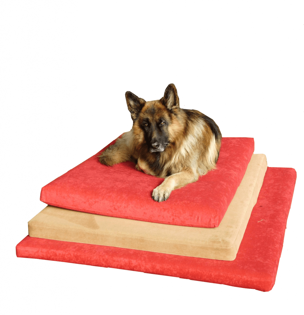 The Big Dog Bed Company Speciality Dog Beds