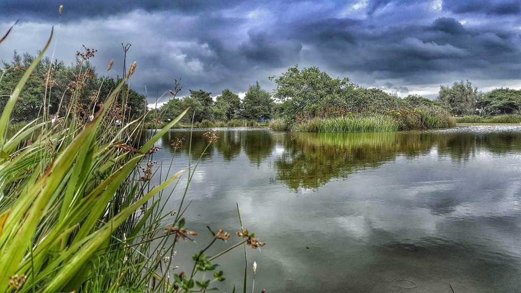 Warcombe Farm Lake