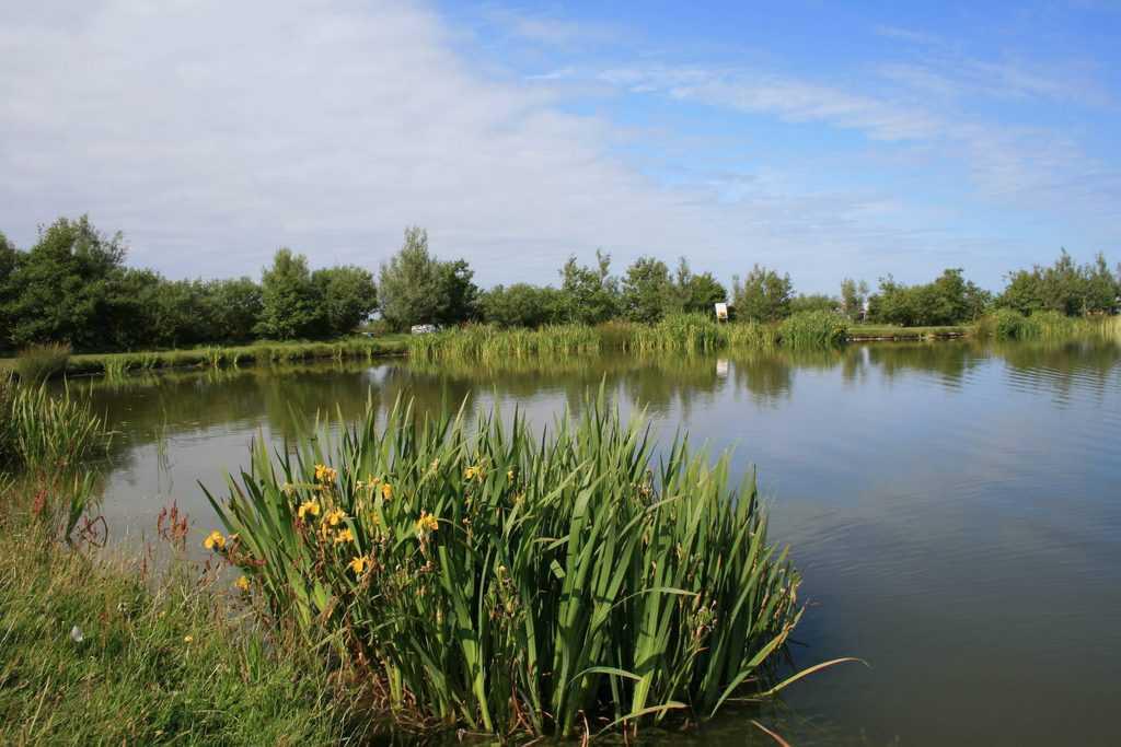 Warcombe Farm Camping Park