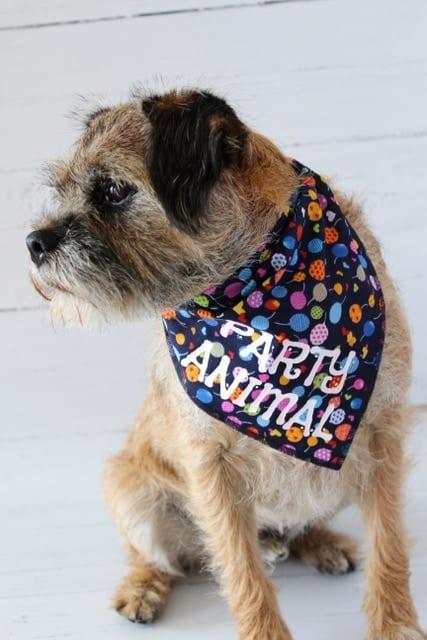 Party Animal Dog Bandana