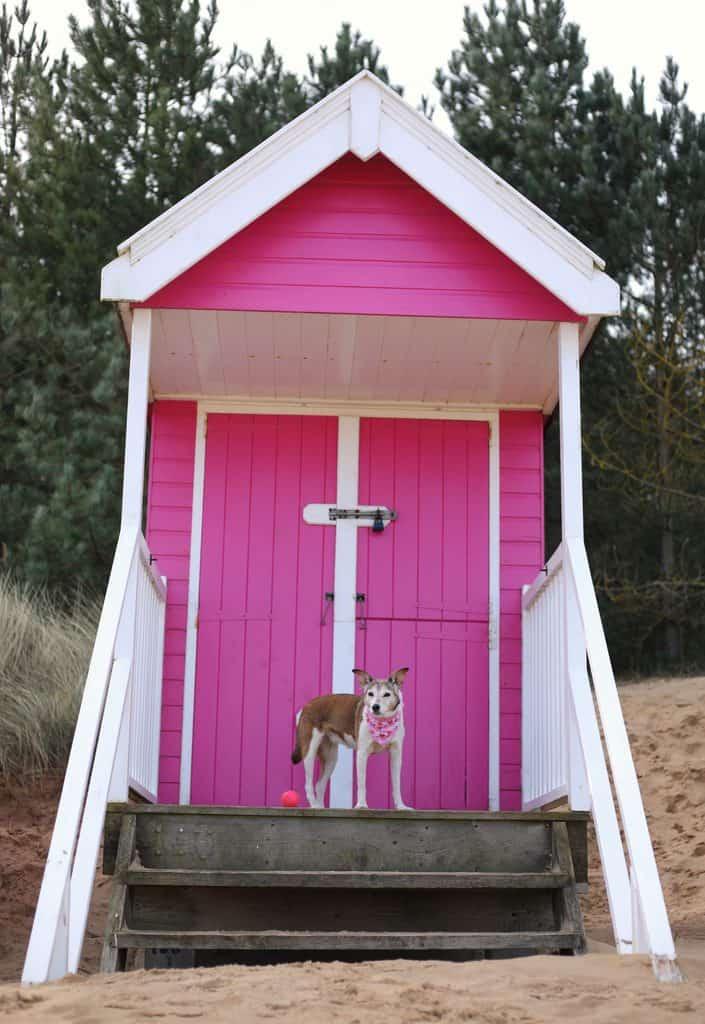 Pink Beach Hut at Wells Beach