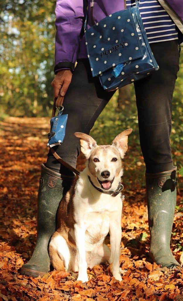 Cosy Canine Company Dog Walking Bag
