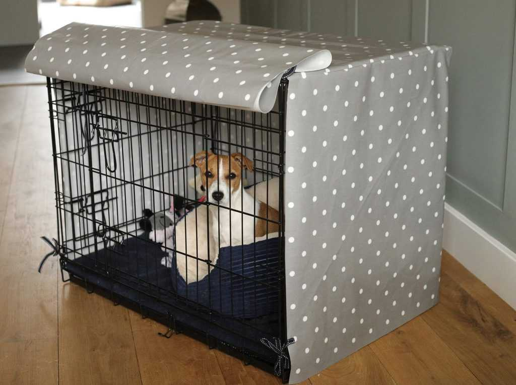 Puppy in Dog Crate