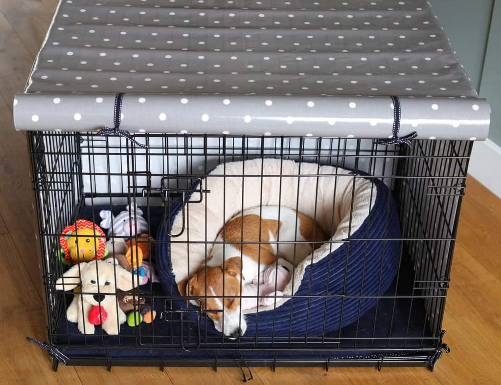 How To Crate Train Your Puppy The Gentle Way Dotty4paws