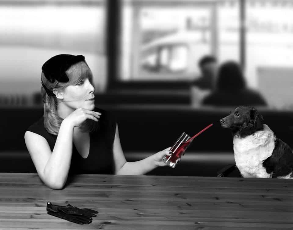 Dog At Bar