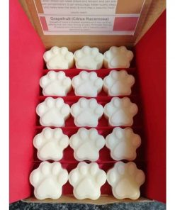 box of paw shaped wax melts