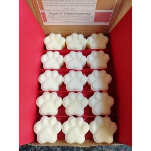 box of paw shaped wax melts