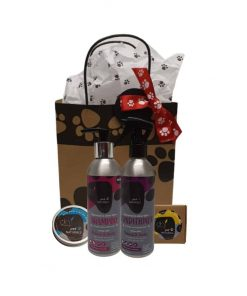DERMANATURAL Pet Naturals DOG ECO GIFT SET 200ml