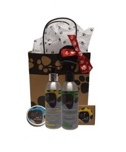 DERMANATURAL Pet Naturals PUPPY ECO GIFT SET 200ml