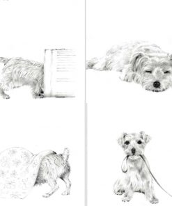 card sketch design dogs