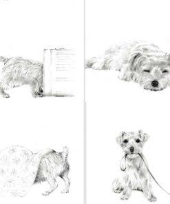 card sketch design dogs