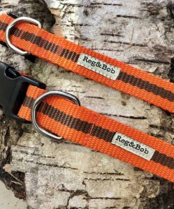Orange and brown dog collar