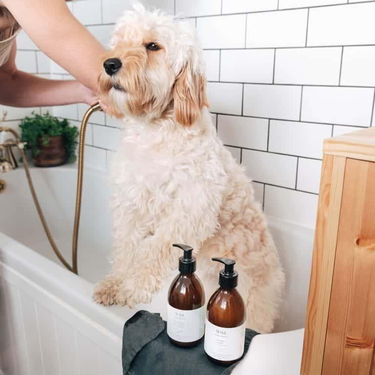 Saffron Pawtique Natural Dog Shampoo