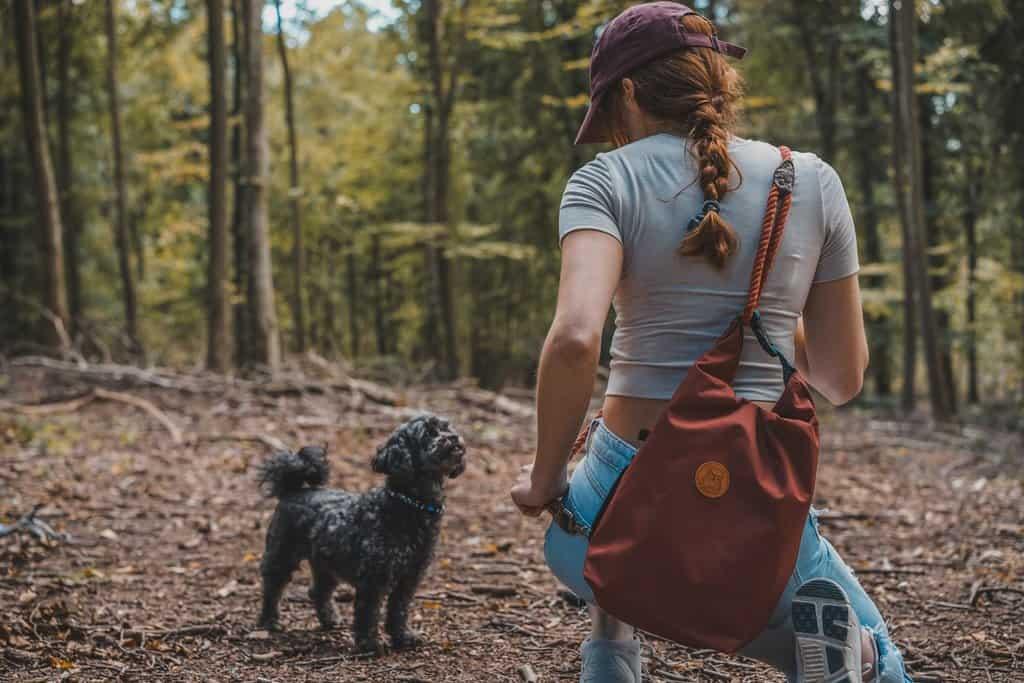 Saffron Pawtique Dog Walking Rucksack