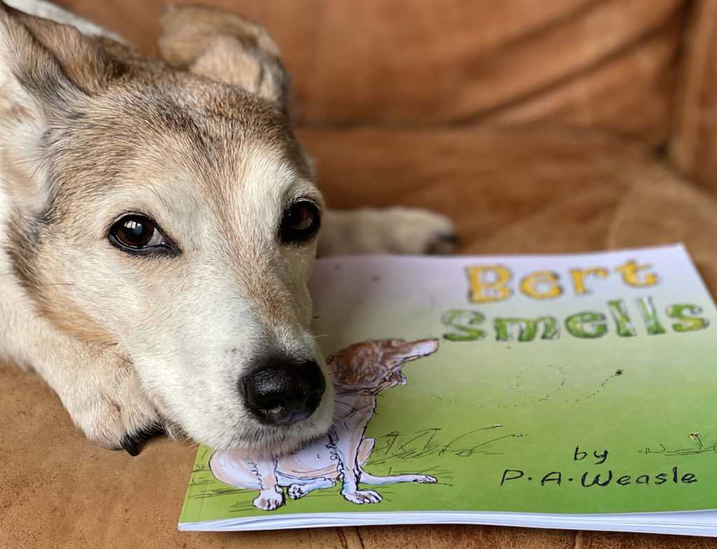 Bert Smells book for 4-6 year olds