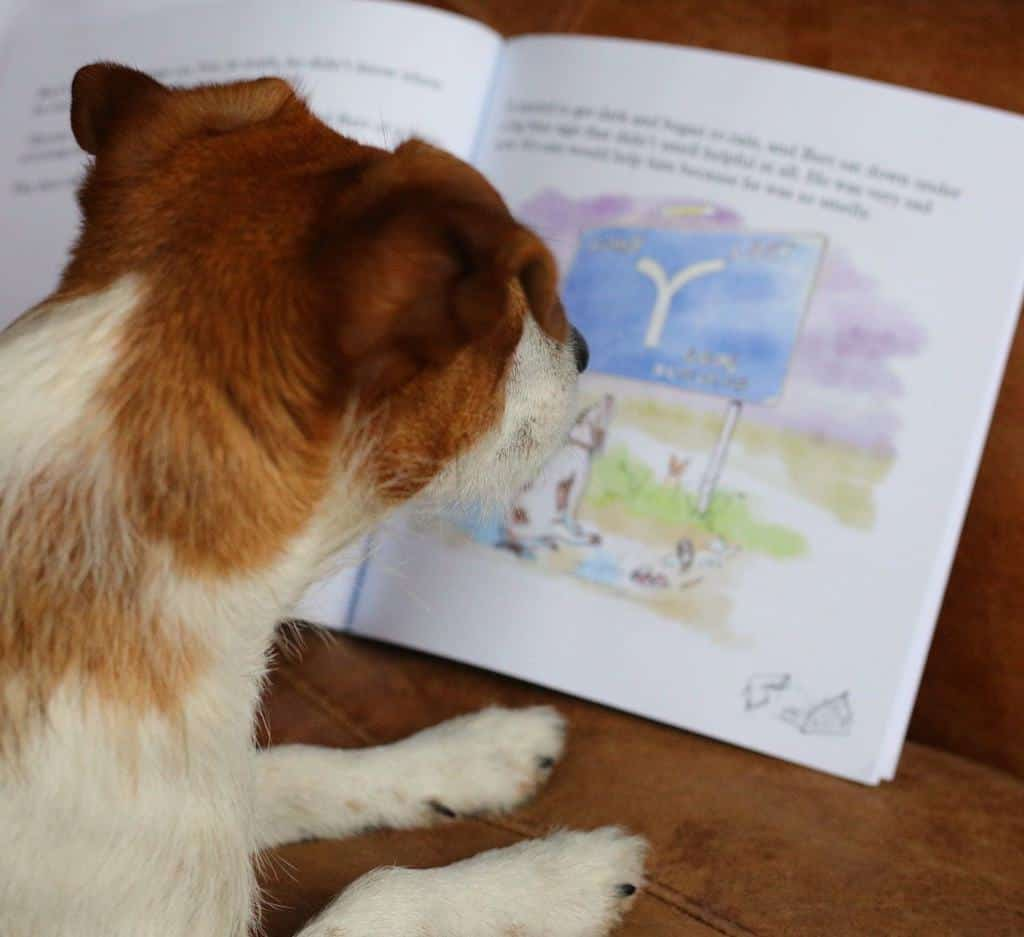Bert Smells Children's Book