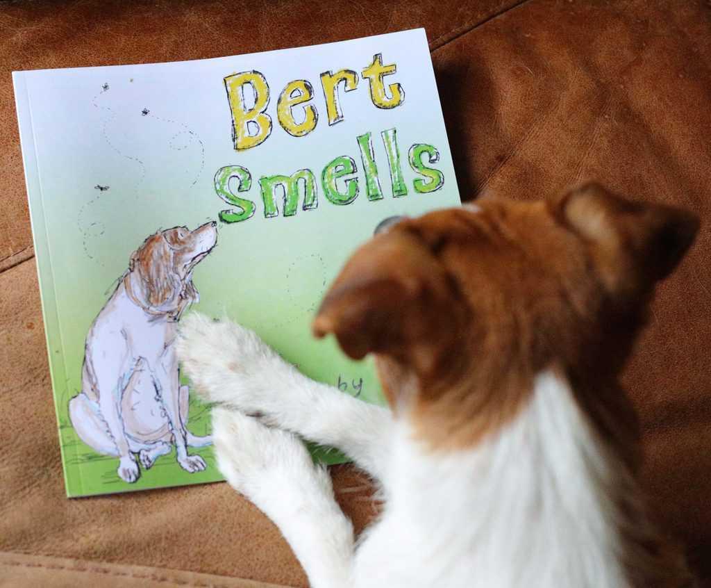 Bert Smells