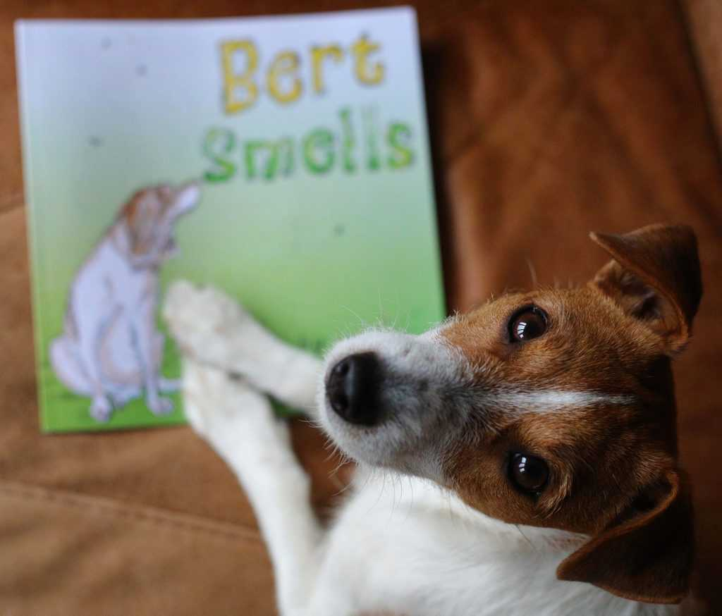 Bert Smells Children's Literature