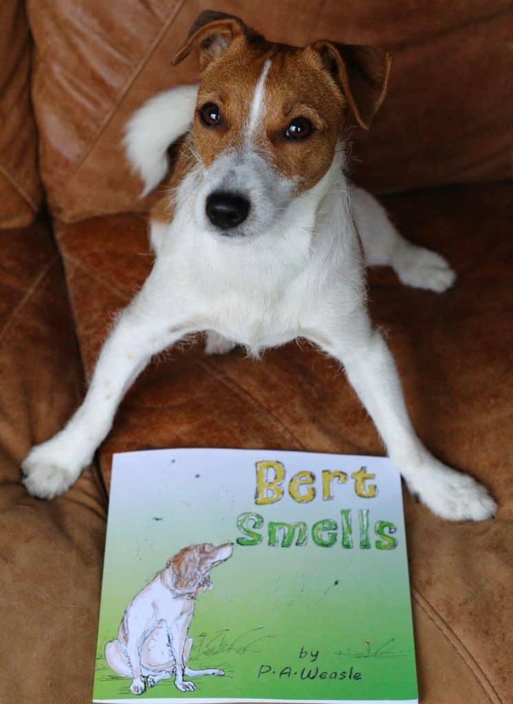 Bert Smells Children's Story