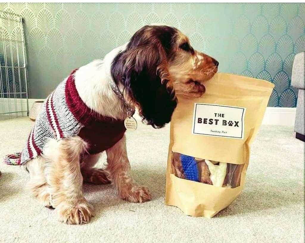 The Best Box Natural Dog Treats