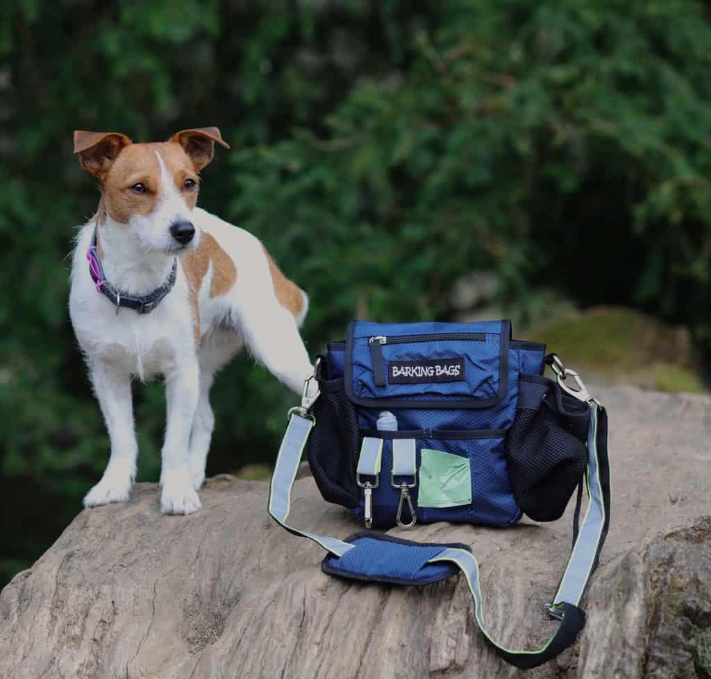 Gifts for Dog Lovers Dog Walking Bag