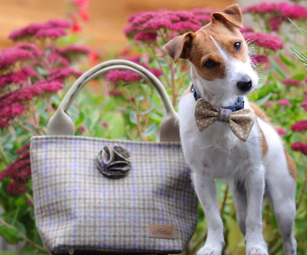 Hettie Tweed Handbag With Matching Dog Accessoires