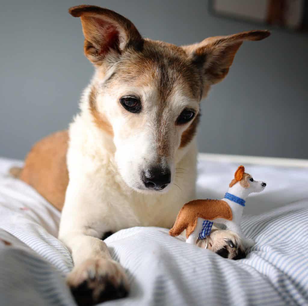 Handmade Mini Dog Keyring for Dog Lovers