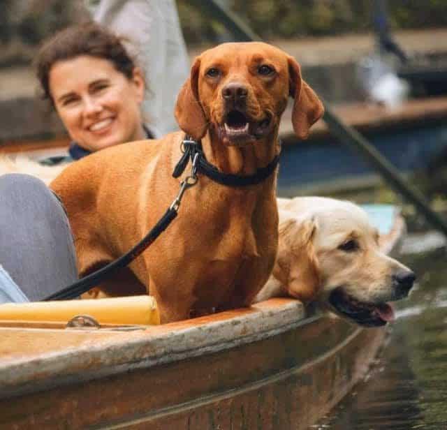 Dog friendly Punting Cambridge