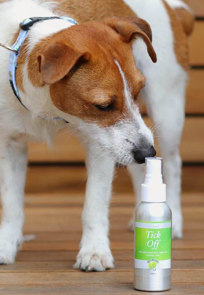 Tick Off Natural Tick Repellent Spray for Dogs