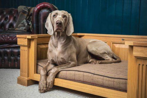 Parkman George Fraser Dog Bed
